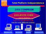 total platform independence