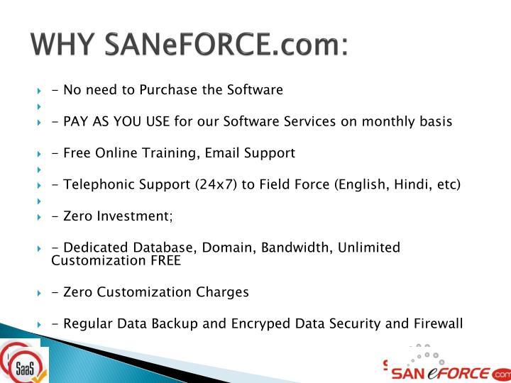WHY SANeFORCE.com:
