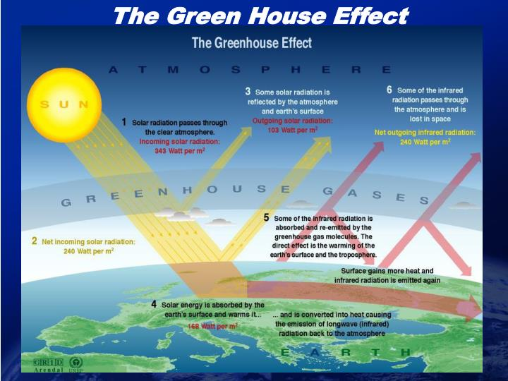 The Green House Effect