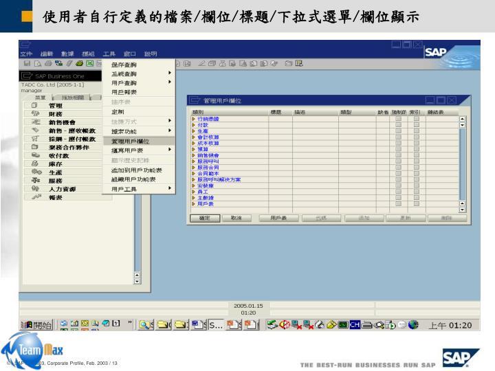 使用者自行定義的檔案/欄位/標題/下拉式選單/欄位顯示