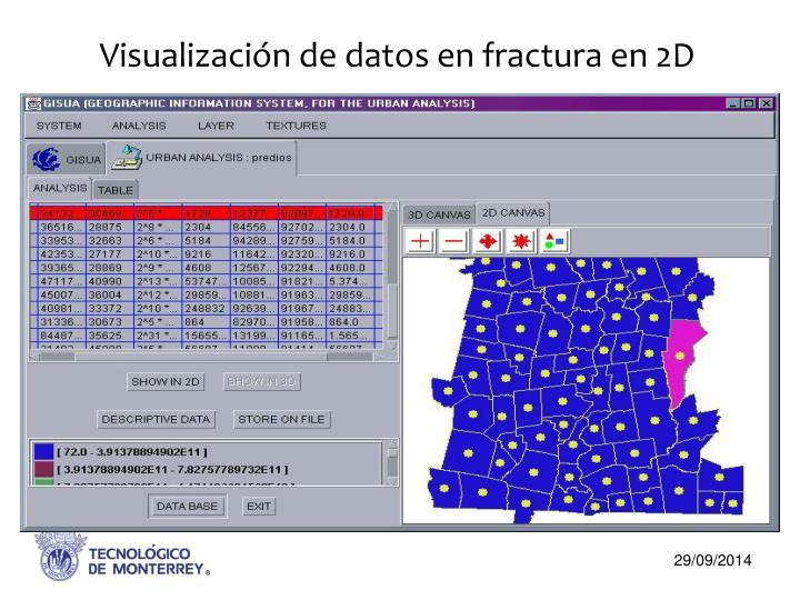 Visualización de datos en fractura en 2D