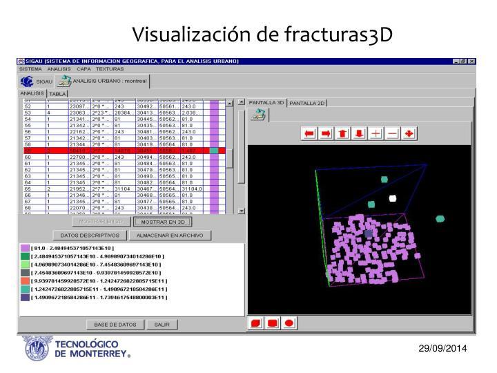 Visualización de fracturas3D