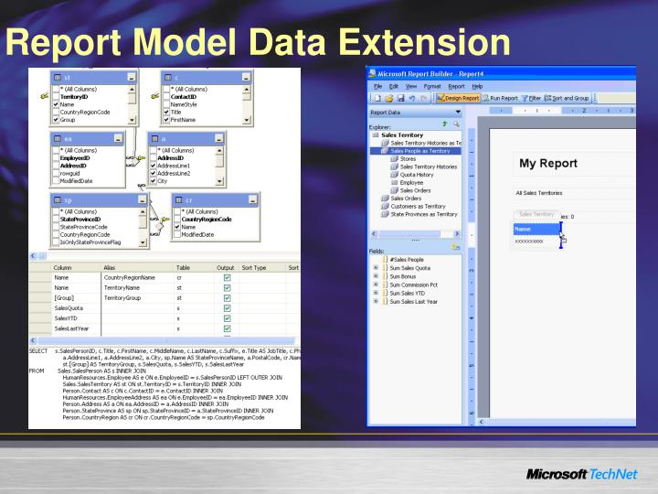 Report Model Data Extension