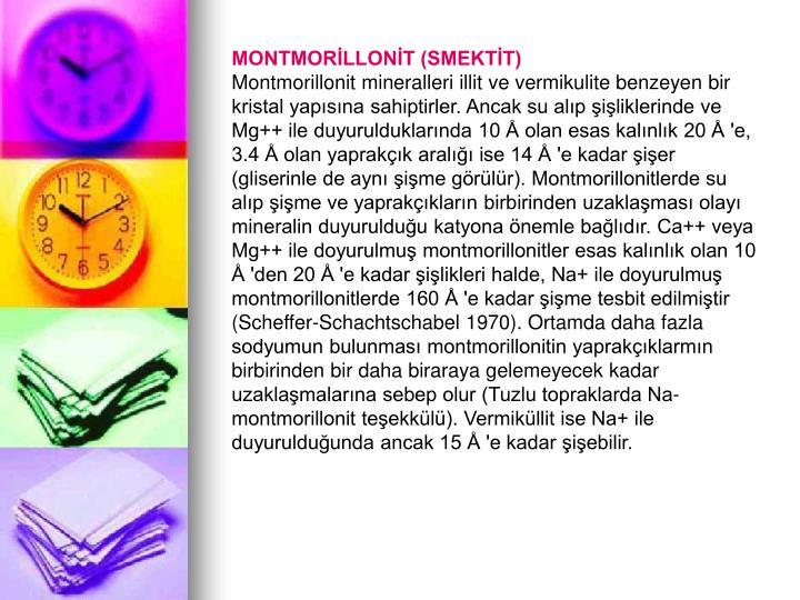 MONTMORİLLONİT (SMEKTİT)