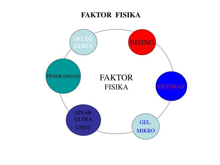 FAKTOR  FISIKA