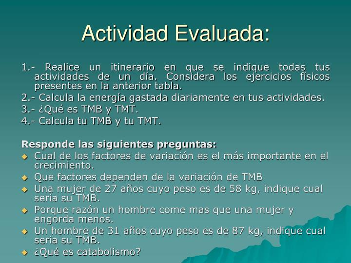 Actividad Evaluada:
