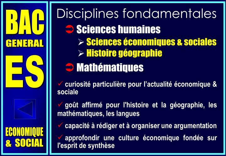 Disciplines fondamentales