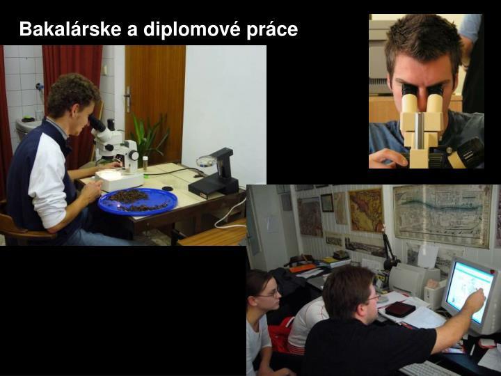 Bakalárske a diplomové práce