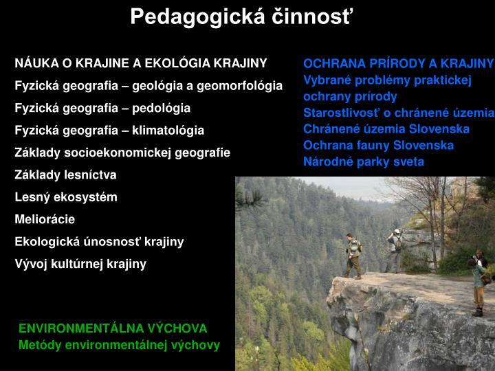 Pedagogická činnosť