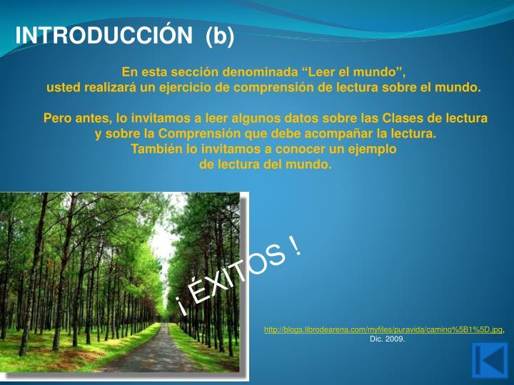 INTRODUCCIÓN  (b)