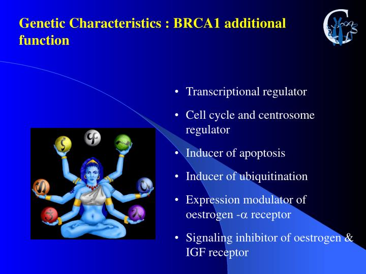 Genetic Characteristics : BRCA1 additional function