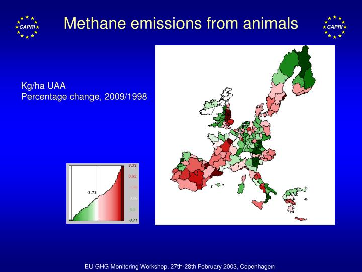 Methane emissions from animals