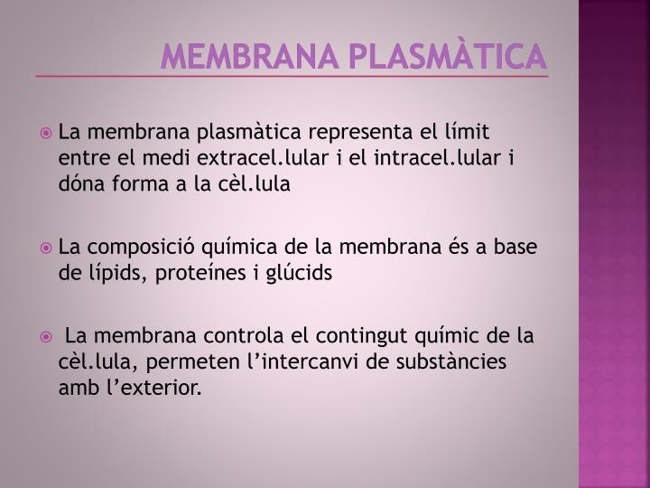 Membrana plasmàtica