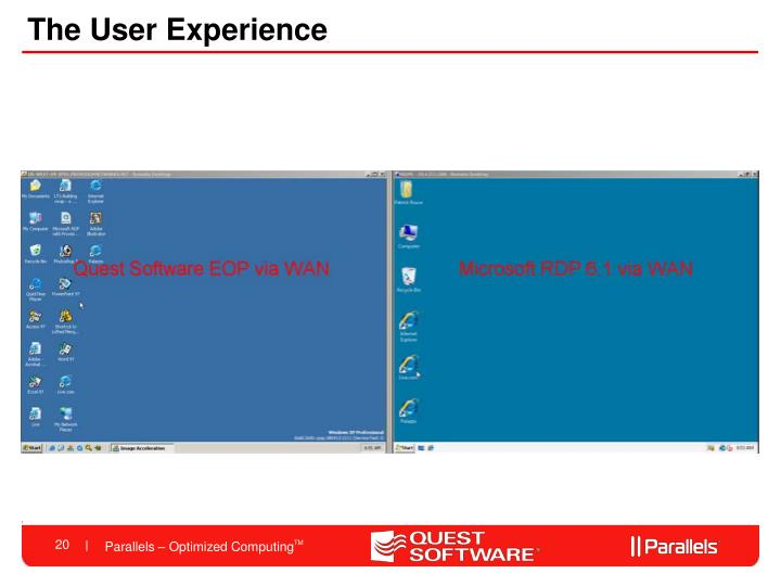 The User Experience