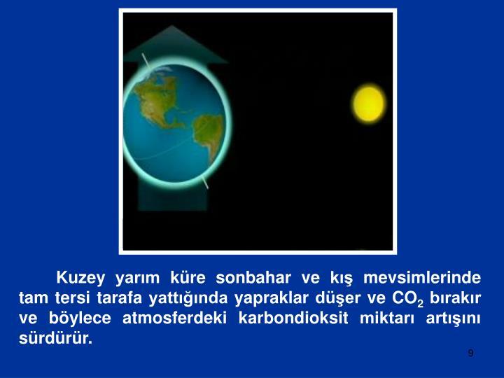 Kuzey yarım küre sonbahar ve kış mevsimlerinde tam tersi tarafa yattığında yapraklar düşer ve CO