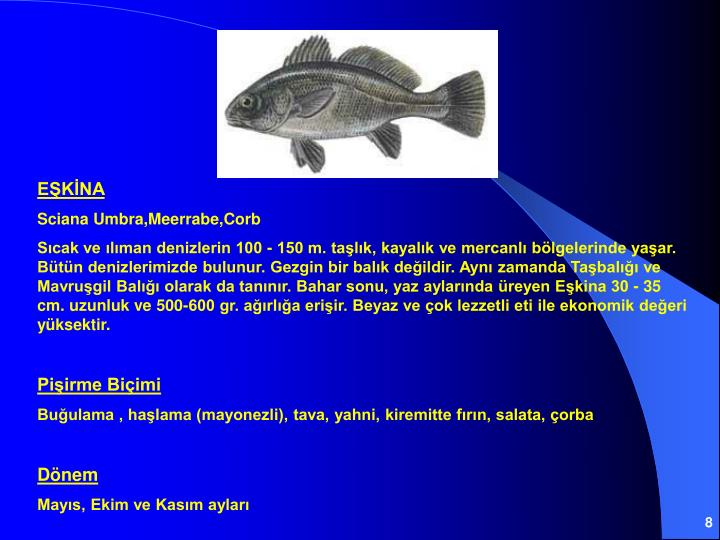 EŞKİNA