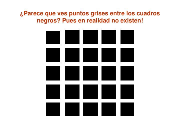 ¿Parece que ves puntos grises entre los cuadros negros? Pues en realidad no existen!