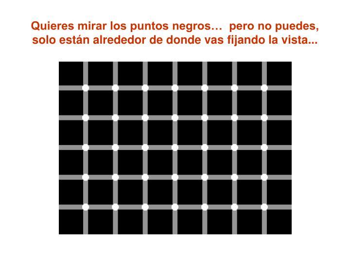 Quieres mirar los puntos negros…  pero no puedes, solo están alrededor de donde vas fijando la vista...