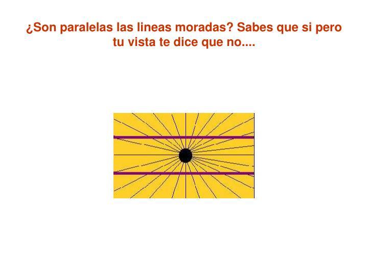 ¿Son paralelas las lineas moradas? Sabes que si pero tu vista te dice que no....
