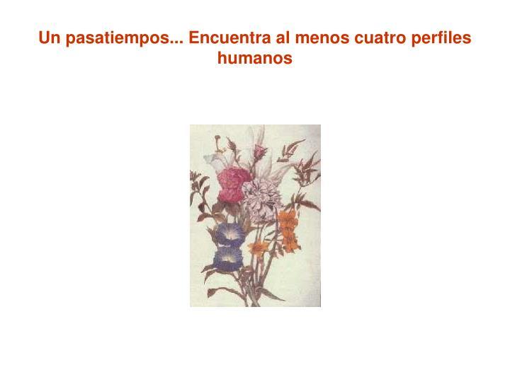 Un pasatiempos... Encuentra al menos cuatro perfiles humanos