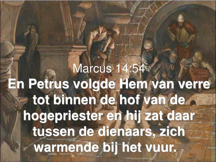 Marcus 14:54