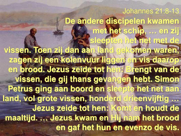 Johannes 21:8-13