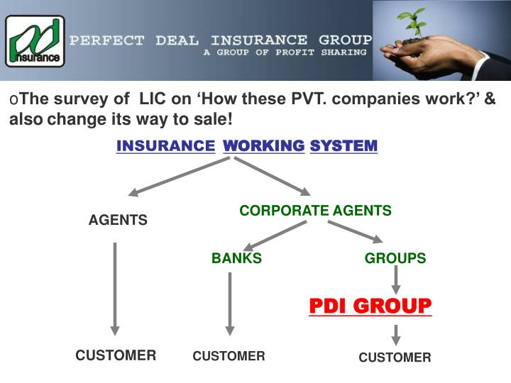 The survey of  LIC on 'How these PVT. companies work?' & also