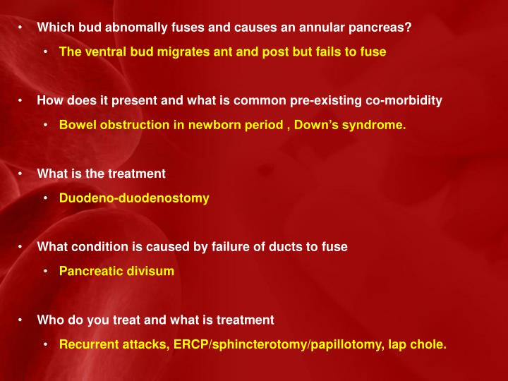 Which bud abnomally fuses and causes an annular pancreas?