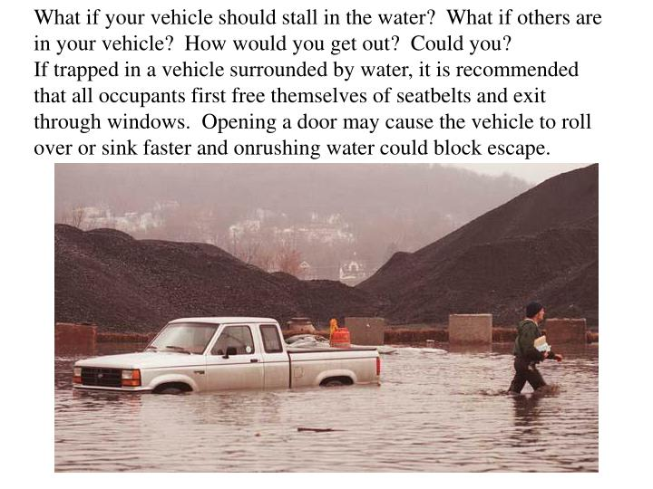 What if your vehicle should stall in the water?  What if others are in your vehicle?  How would you get out?  Could you?                If trapped in a vehicle surrounded by water, it is recommended that all occupants first free themselves of seatbelts and exit through windows.  Opening a door may cause the vehicle to roll over or sink faster and onrushing water could block escape.