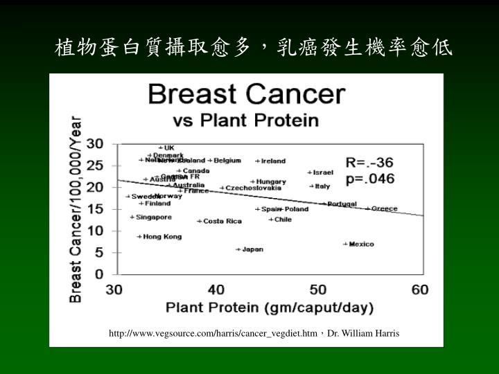 植物蛋白質攝取愈多,乳癌發生機率愈低