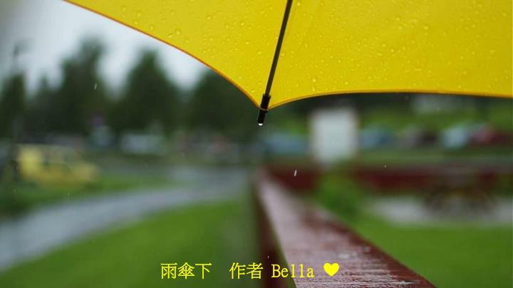 雨傘下  作者