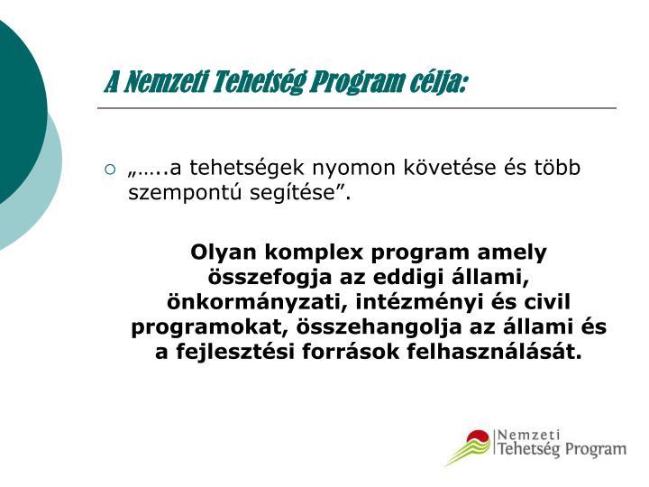 A Nemzeti Tehetség Program célja: