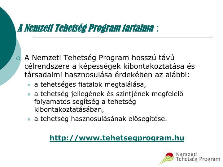 A Nemzeti Tehetség Program tartalma
