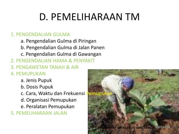 D. PEMELIHARAAN TM