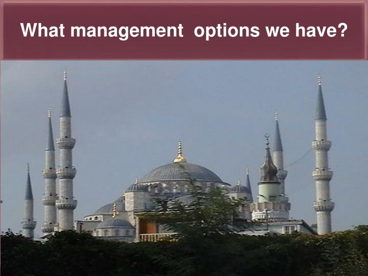 What management  options we have?