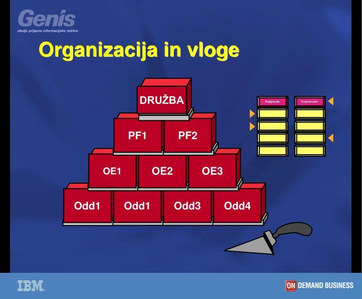 Organizacija in vloge