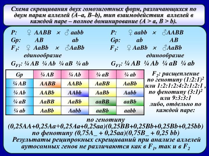 ,      (, b),           ( > ,  > b).