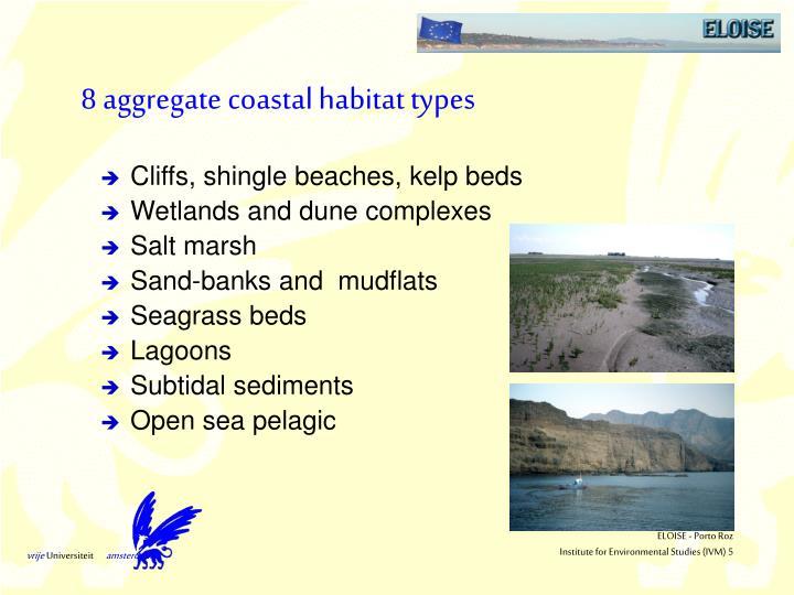 8 aggregate coastal habitat types