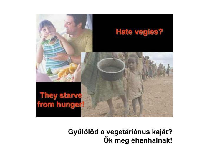 Gyűlölöd a vegetáriánus kaját?