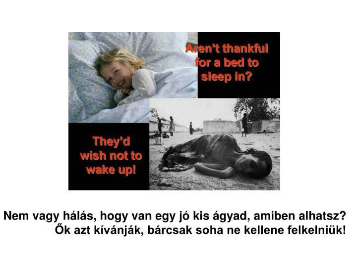 Nem vagy hálás, hogy van egy jó kis ágyad, amiben alhatsz?
