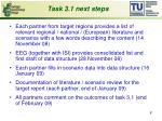 task 3 1 next steps