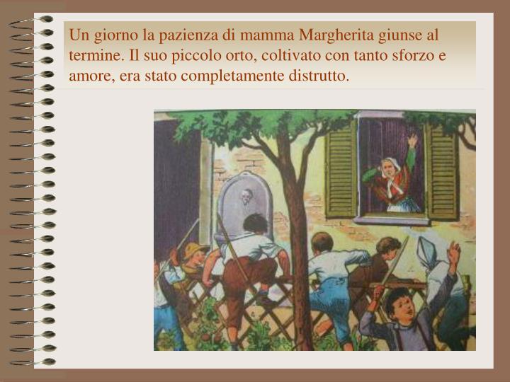 Un giorno la pazienza di mamma Margherita giunse al termine. Il suo piccolo orto, coltivato con tanto sforzo e amore, era stato completamente distrutto.