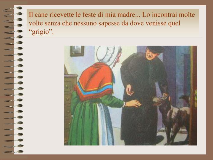 """Il cane ricevette le feste di mia madre... Lo incontrai molte volte senza che nessuno sapesse da dove venisse quel """"grigio""""."""