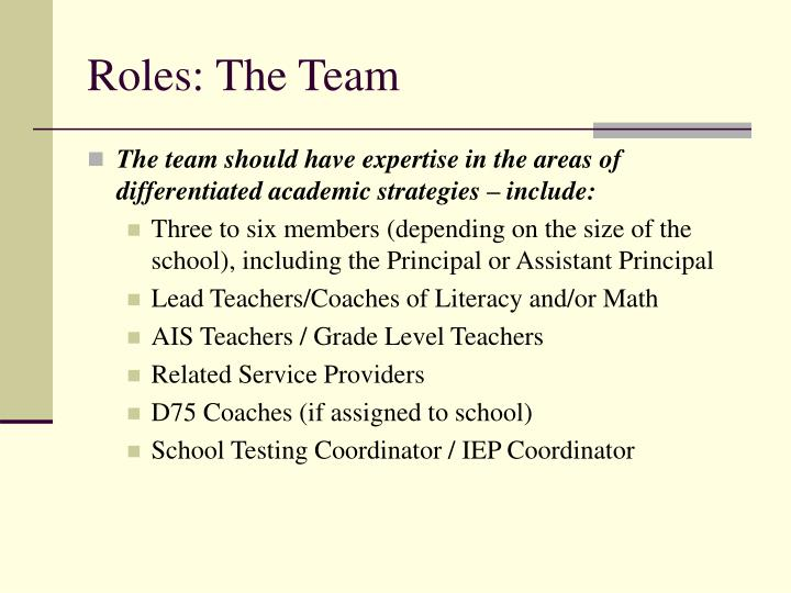 Roles: The Team