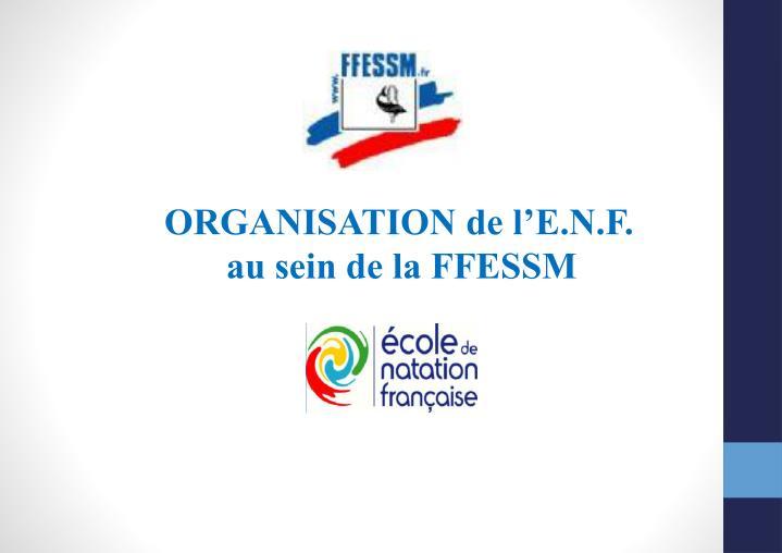 ORGANISATION de l'E.N.F.