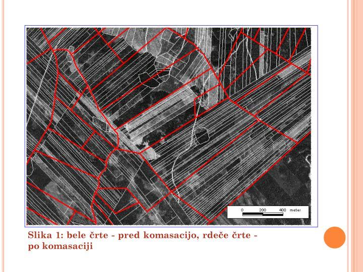 Slika 1: bele črte - pred komasacijo, rdeče črte - po komasaciji