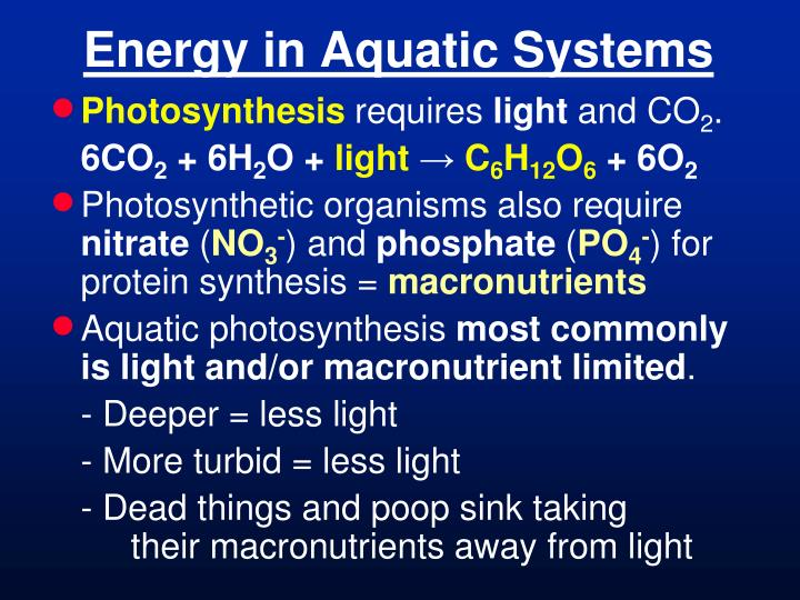 Energy in aquatic systems1