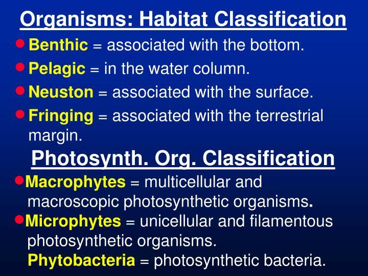 Organisms: Habitat Classification