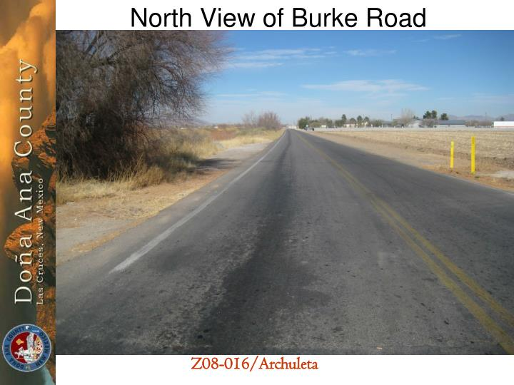 North View of Burke Road
