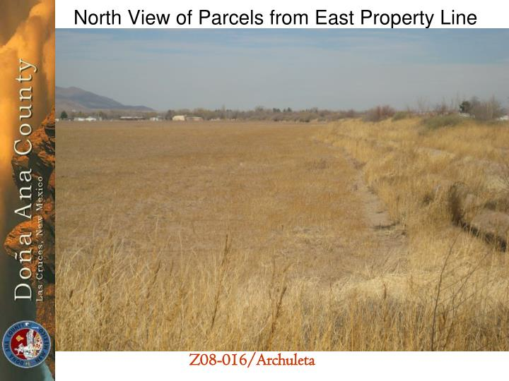 North View of Parcels from East Property Line